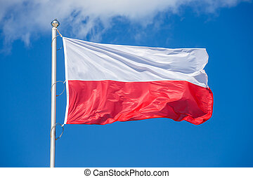 Polish flag on blue sky background