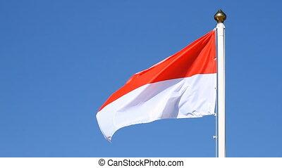 Polish flag on a background sky