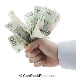 Polish money in hand