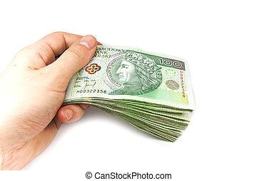 Polish money in hand isolated