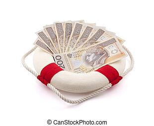 Polish money in lifebuoy