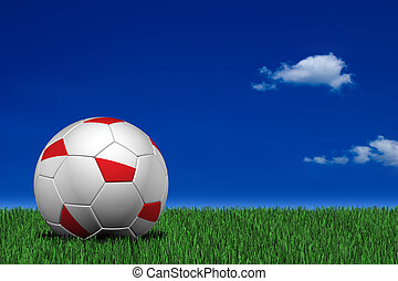 Polish soccer ball