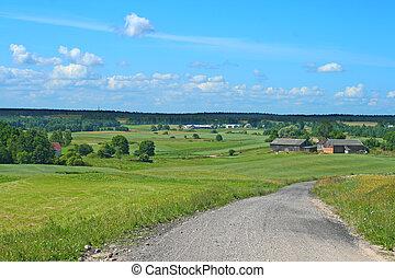 Polish summer landscape