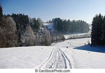 Polish winter view with snowmobile trace
