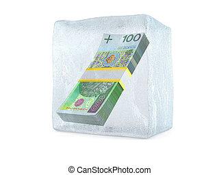 Polish zloty inside ice cube