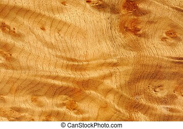 A close-up of polished madrone root wood texture