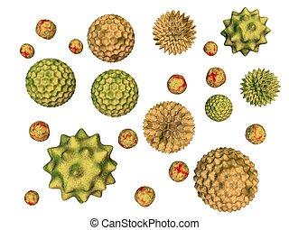 3d rendered of pollen particles