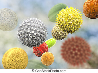 Pollen grains from different plants