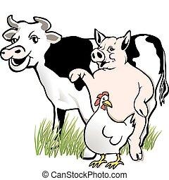 pollo, cerdo, vaca