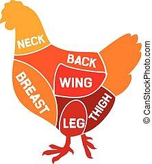 pollo, diagrama, cortes