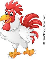 pollo, proposta, cartone animato, gallo