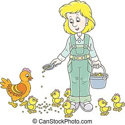 pollos, mujer, aves de corral, alimentación