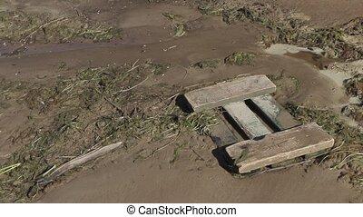 pollué, écologique, rivière, désastre, bank.