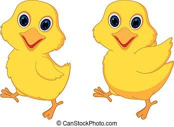 polluelo, caricatura, feliz