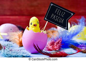polluelo, el emerger, de, un, huevo, y, texto, feliz, pascua, pascua feliz, en, español