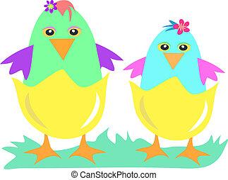 polluelo, huevos, dos
