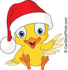 polluelo, navidad