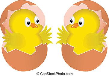 polluelos, dos