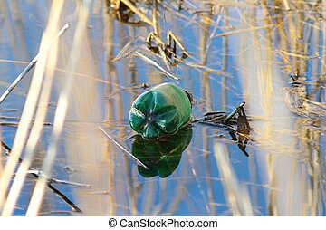 pollution in natural wetland area, green plastic bottle left...