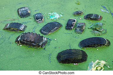 Environment of green pond is heavily polluted by various waste including tires and plastic