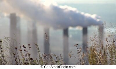 Pollution of the Atmosphere by an Industrial Enterprise of the Metallurgical Industry.