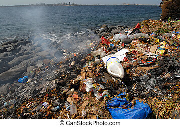pollution on the sea shore