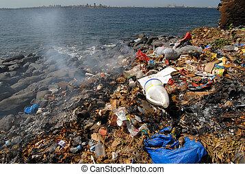 pollution on the sea shore