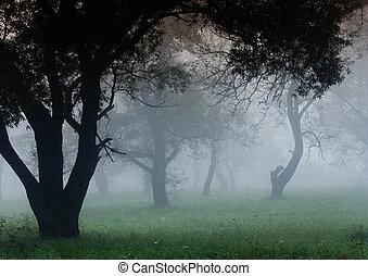 polnisch, november, landschaftsbild