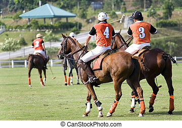 Polo - Image of polo enthusiasts in action.