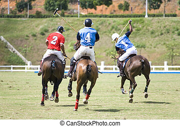 Polo - Image of polo players in action.