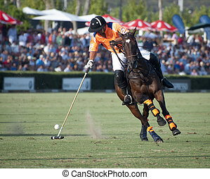 A polo player on horseback caught in the action.