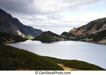 polonia, lago, cinque, tatra, valle, montagne