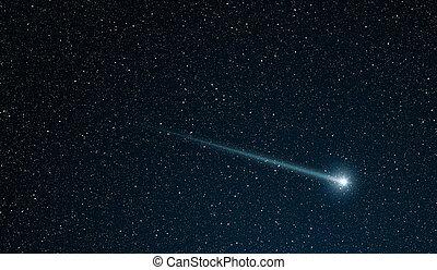 Polowanie, Gwiazda