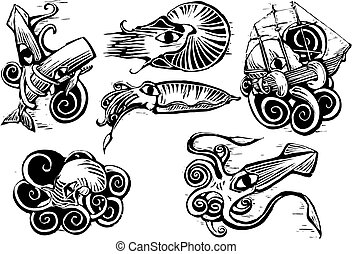 polpo, calamaro, gruppo