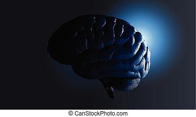 polygonal, bg, sombre, cerveau, vue côté