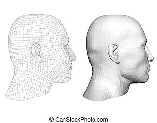 polygonal, cabeça