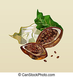 polygonal cocoa beans