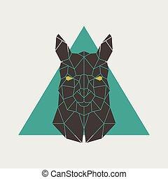 polygonal, głowa, alpaca.