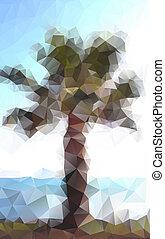 polygonal, paume