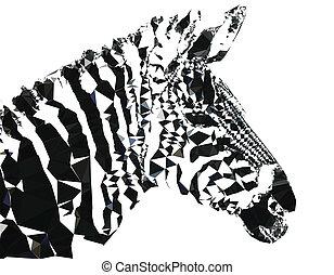 polygonal, porträt, geometrisch, zebra