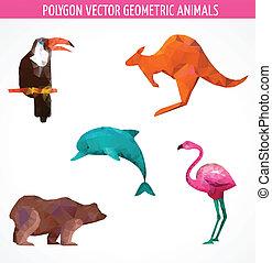 polygonal, vektor, tiere, sammlung, bunte
