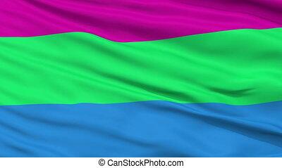 polysexual, haut, drapeau ondulant, fin, fierté