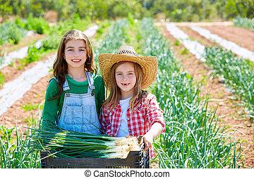 pomar, cebola, litte, meninas, agricultor, colheita, criança