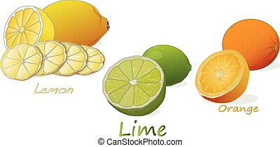 pomarańcza, cytrus, cytryna, fruit., odizolowany, tło., lime., biały
