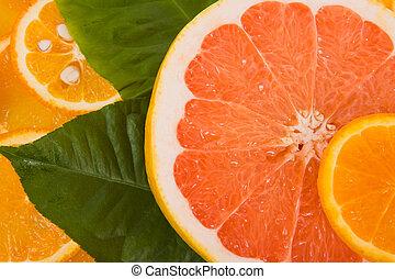 pomarańcza, grejpfrut, cytryna, kromki