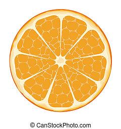 pomarańczowa kromka, sztuka, wektor
