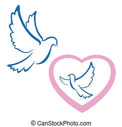 pomba, símbolo, amor
