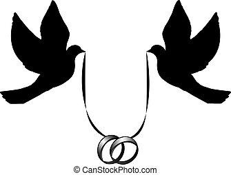 pombas, com, anéis casamento