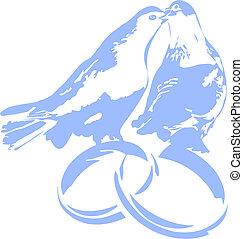 pombos, ligado, anéis casamento
