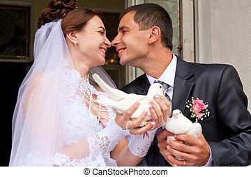 pombos, noivo, noiva, segurando, casório, feliz